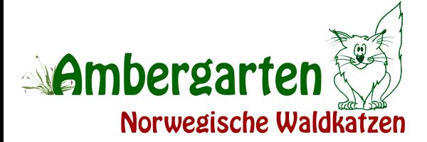 Ambergarten